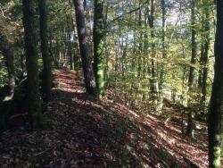 Parc Regional Basse Normandie