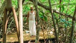Samadhi Yoga Ashramaya