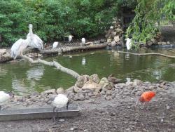 Van Blanckendaell Park