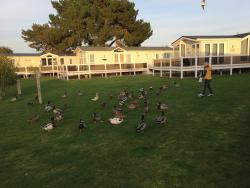 Lovely little park!!