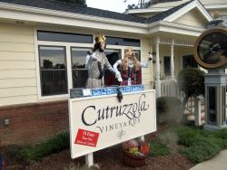 Cutruzzola Vineyards