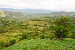 Reserva Natural Miraflor