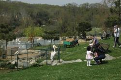 Polonezköy Hayvanat Bahçesi ve Doğal Yaşam Parkı (Polonezköy Zoo)