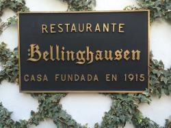 Bellinghausen - Zona Rosa