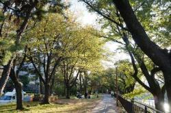 Sotobori Park