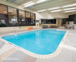 The Pool at the Four Points by Sheraton Toronto Airport