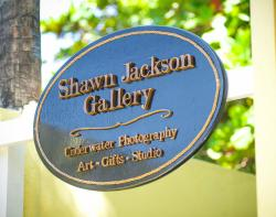 Shawn Jackson Photography
