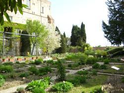 Orto Botanico dell'Universita di Perugia