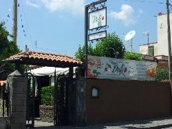 Ristorante Pizzeria Dolfi