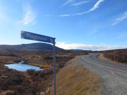 Grønbakken trail
