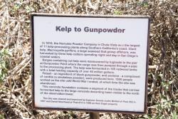 Kelp to Gunpoweder