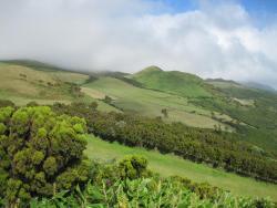Reserva Florestal de Recreo de Macelas