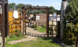 Fritton Owl Sanctuary