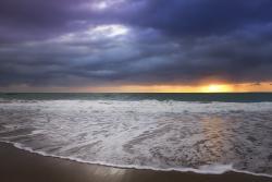 Praia de Maracaípe (157651663)