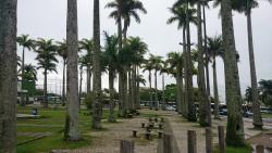 Parque Metropolitano Dias Velho