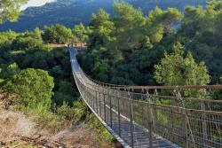 ‪Hanging Bridge at Nesher Park‬