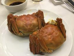 Xiao Lu Lu Restaurant