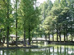 Ageo Maruyama Park