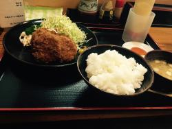 Shishio, Torifuku Seinikuten