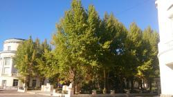 Fontannaya Street