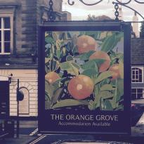 The Orange Grove