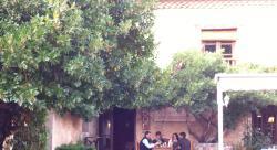 Patio Corral de Joaquina