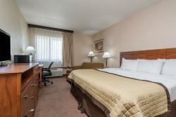 Standard King Room with Single Sofa Sleeper