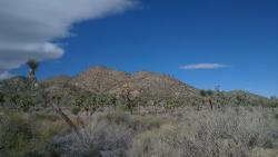 Campground and panorama loop hike.
