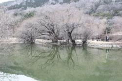 Jinhae NFRDI Environment Eco-park