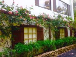Adagio Reindeer Taichung Herb House