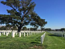 ‪Golden Gate National Cemetery‬