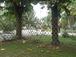 Giardino per foto