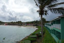 A windy day in the tropics