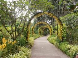 싱가포르 식물원