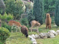 Il Giardino Segreto