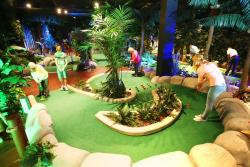 ‪Treetop Adventure Golf‬