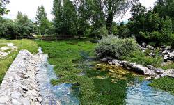 Die Quelle der Cetina