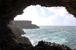 Animal Flower Cave