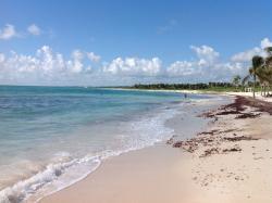 You can walk far down the beach each day