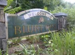 Blunt Park