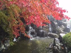 Sakurayama Park
