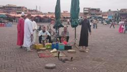 Marrakesh Guided Tours