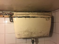 Possibly the worst toilets in the UK. They should be ashamed of themselves.