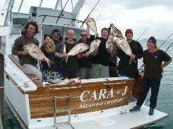 Bream Bay Charters - Day Fishing Charters
