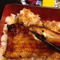 Edoyaki Unagi Hishitomi
