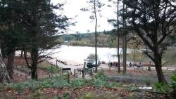 View of the lake from the activity den