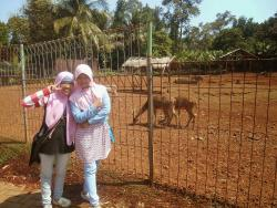 Taman Lembah Hijau Lampung