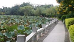 泉州东湖公园