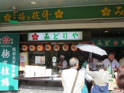 Midoriya Umegae Mochi