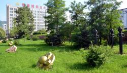 Guonei City